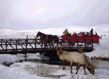 National Elks Refuge Sleigh Rides Jackson, WY - Monday, December 16th 2013 - Saturday, April 5th 2014 4 tickets donated