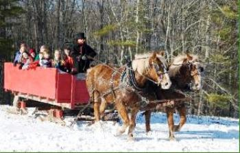 Horse - Drawn Sleigh Ride at Coppal House Farm Lee, NH - Friday, December 20th 2013 - Friday, January 24th 2014 1 ticket donated