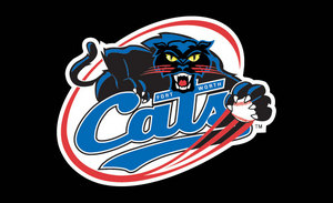 Fort Worth Cats vs. Rio Grande Valley Whitewings - Ulb - Thursday Fort Worth, TX - Thursday, July 31st 2014 at 7:05 PM 10 tickets donated