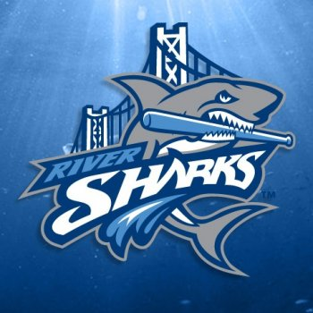 Camden Riversharks vs. Somerset Patriots - MILB Camden, NJ - Sunday, August 3rd 2014 at 1:35 PM 20 tickets donated