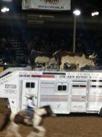 Alejandro attended 62nd Annual Parada Del Sol Rodeo 2015 on Feb 27th 2015 via VetTix