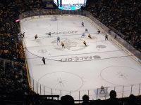 heather attended Nashville Predators vs Dallas Stars - NHL on Oct 11th 2014 via VetTix
