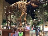 Click To Read More Feedback from Creation Museum - Ga Admission Tickets