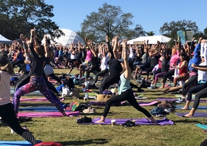 Margaret attended Wanderlust 108 Tampa - a 5k, Yoga and Meditate Festival on Nov 3rd 2018 via VetTix