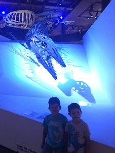 Jorge attended Houston Museum of Natural Science on Oct 7th 2017 via VetTix