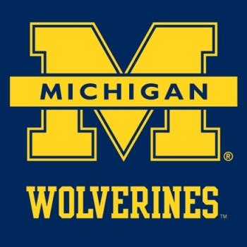 University Of Michigan Wolverines Vs Usa Hockey National