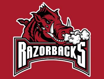 University of Arkansas Razorbacks vs. Ole Miss - NCAA Baseball - Military Appreciation Game Fayetteville, AR - Saturday, March 28th 2015 at 2:05 PM 200 tickets donated